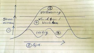 3 fasen van stress en veiligheid